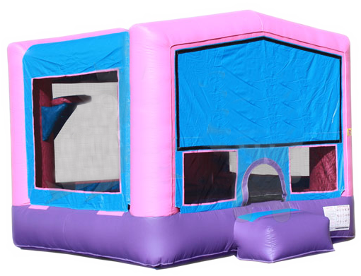 DREAM IN PINK 2 IN 1 BOUNCE HOUSE (Aro de baloncesto incluido)